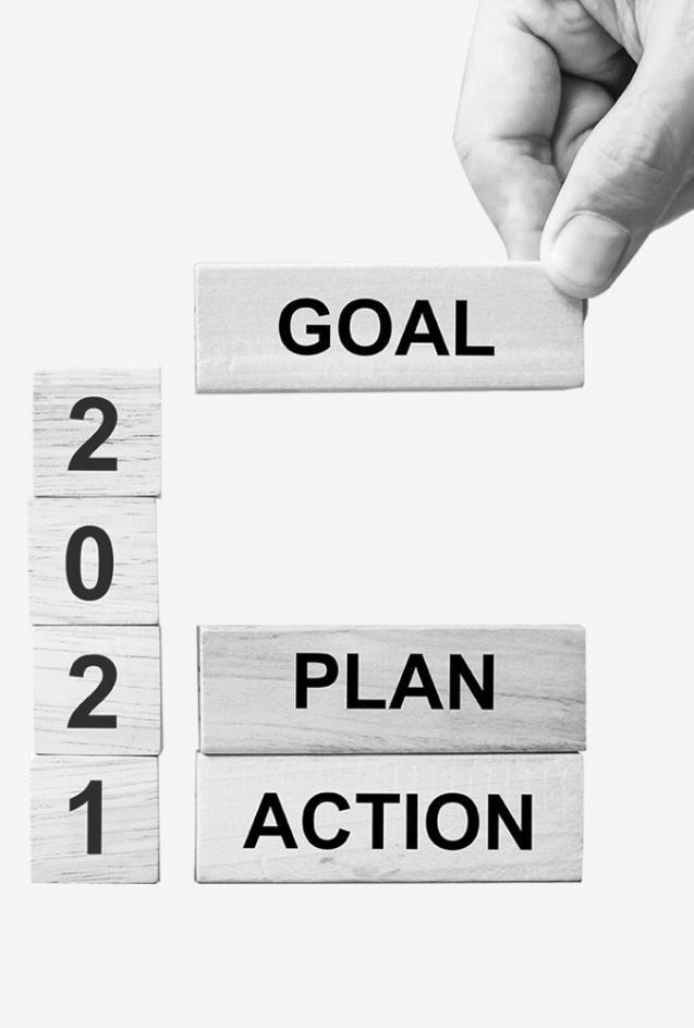 2021 goal plan action